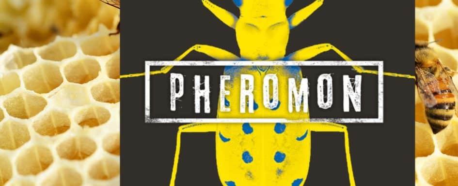 Pheromon Literaturblog