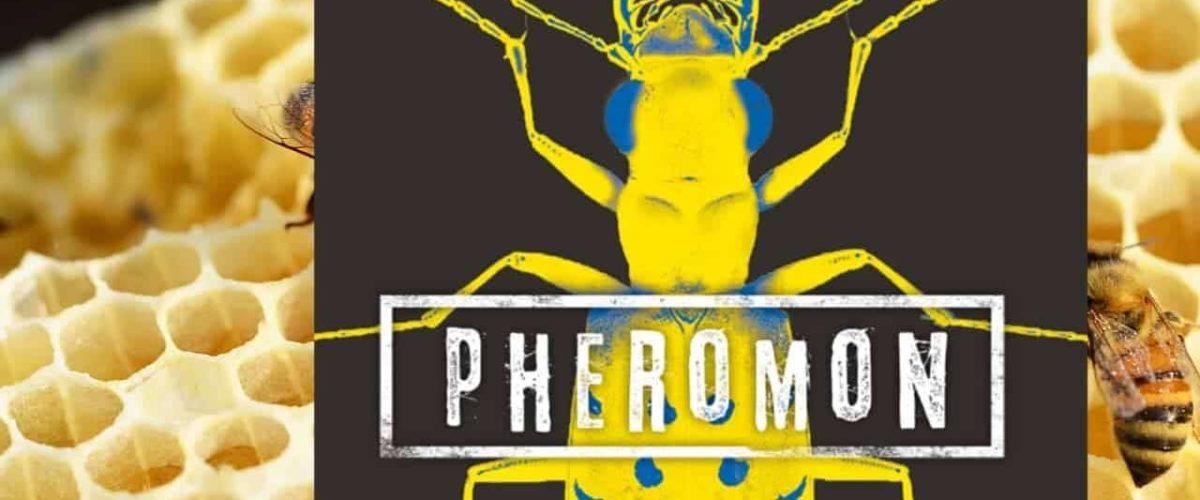 """""""Sie sehen dich – Pheromon 2"""""""