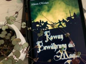 Rowan - Bewährung als Magier - Aileen o'Grian Jugendbuch