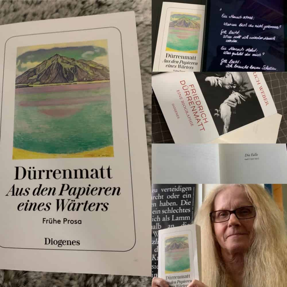Die Falle, Frühe Prosa, WA 19, Friedrich Dürrenmatt