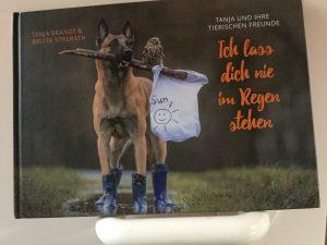 belgischer-schäferhund-kauz